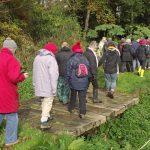 2017 Templewood Wetland Walk
